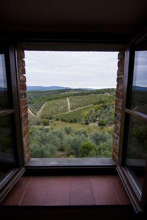 Toscana Mia: View from kitchen window