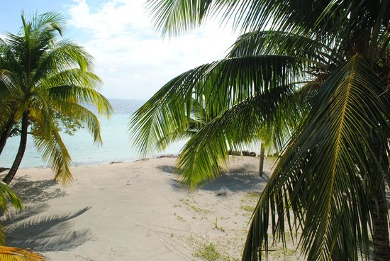 Pelican Beach - South Water Caye: The beach from Egret's Escape South