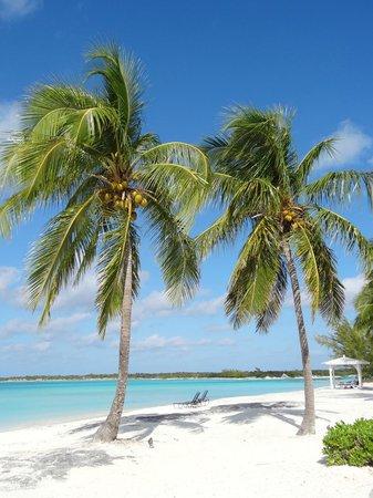 Cape Santa Maria Beach Resort & Villas : Strand (direkt vor der Tür)