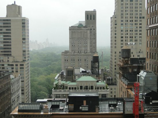 Wellington Hotel: Central Park ao fundo
