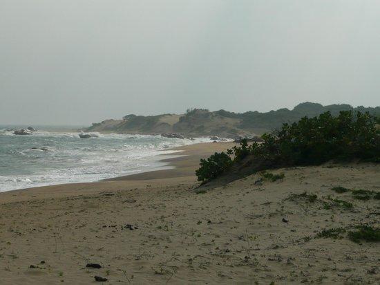 Cinnamon Wild Yala: beach - nice but not for swimming
