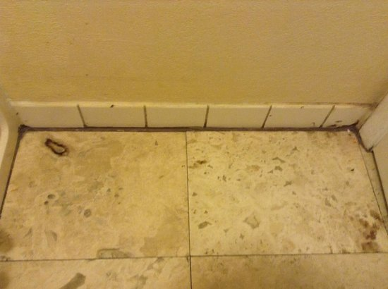 Claremont Kissimmee Hotel: Disgusting filthy bathroom floors and tiles, grout is terrible!