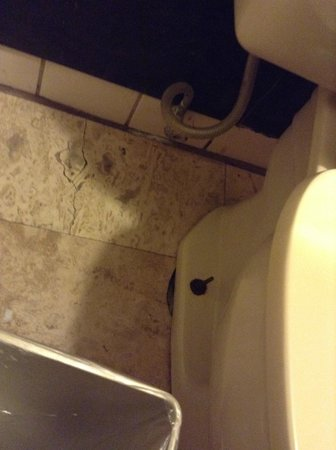 Claremont Kissimmee Hotel: Filthy gross bathroom, but at least the toilet worked!