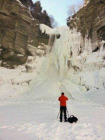 Taughannock Falls State Park : Taughannock Falls - Frozen - February 2014