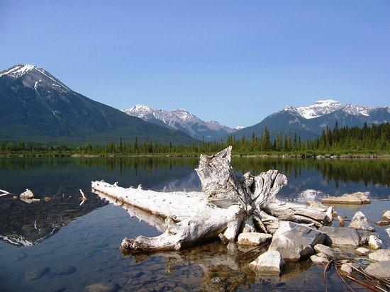 Rimrock Resort Hotel: Banff area