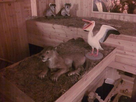 Noah's Ark: Lion, pelican, koalas
