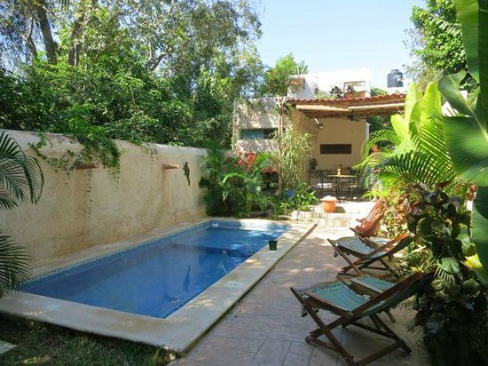 Casa Del Maya: Plunge pool was perfect way to cool off