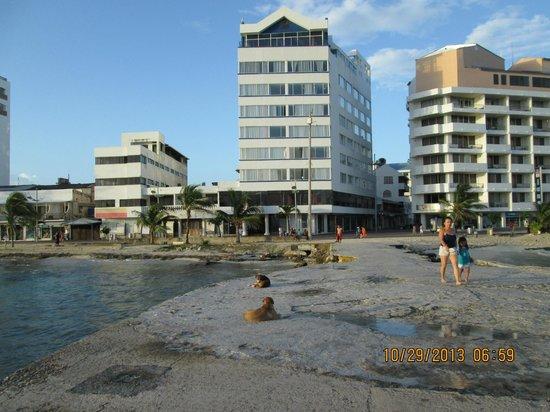 Hotel Calypso : exterior