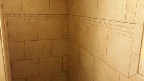 Northwood Inn and Suites : shower inner