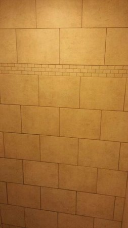 Northwood Inn and Suites : Tile