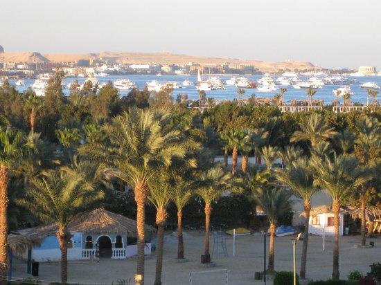 Steigenberger Al Dau Beach Hotel: uitzicht van af de voordeur