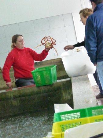 Tazones : La pescadería