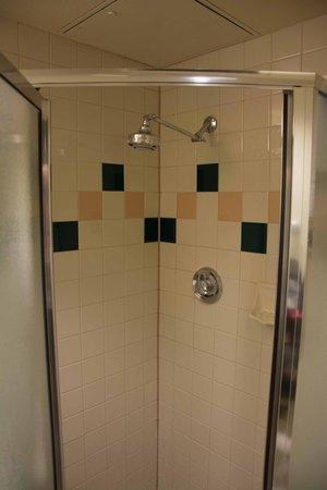 Thunderbird Executive Inn & Conference Center : Rain Fall Type Shower Head