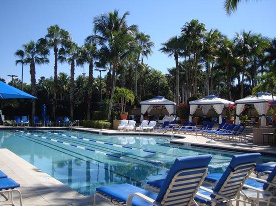 The Ritz-Carlton, Naples: Pool