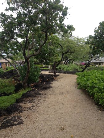 Kolea at Waikoloa Beach Resort: Beach path to Anaeho'omalu Bay