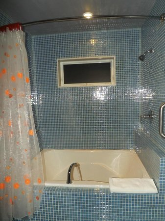 The Roxbury, Contemporary Catskill Lodging : One of the bathrooms in the Final Frontier room