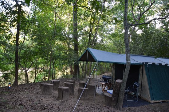 The Yala Adventure Tents & Tents - Picture of The Yala Adventure Tissamaharama - TripAdvisor