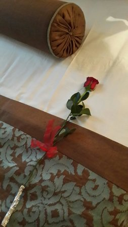 Palazzo Donizetti Hotel: Received a red rose from the Hotel on February 14 <3