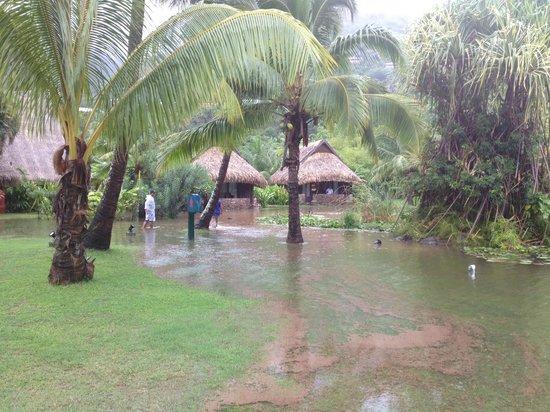Sofitel Moorea Ia Ora Beach Resort: Flooded fish pond