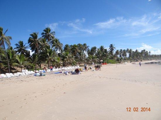 Sauipe Resorts : Praia incrível