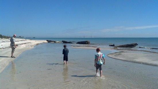 Fort De Soto Park: Tide Pool, the kids loved
