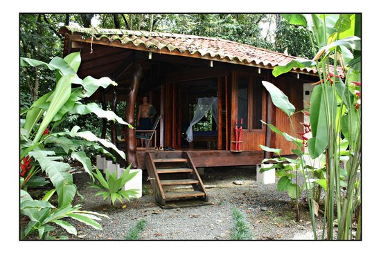 Playa Nicuesa Rainforest Lodge : Our cabin