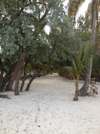 Small Hope Bay Lodge : 'Road' to the cabins
