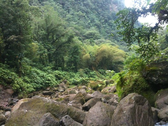 Dominica Botanic Gardens: Ah, che ambienti!
