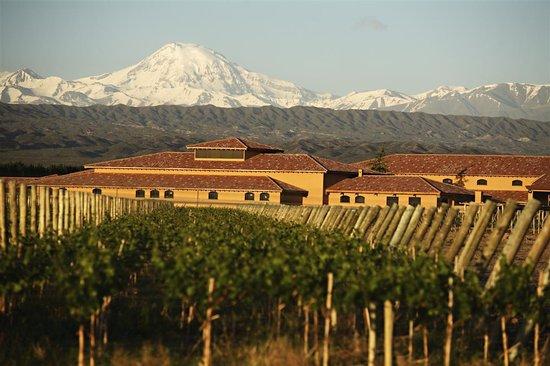 La Bourgogne : Bodegas Pulenta en Vistalba,Mendoza.