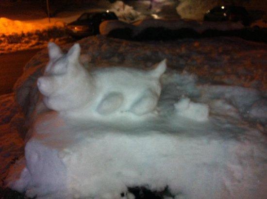 Albergo Asson: neve all ingresso
