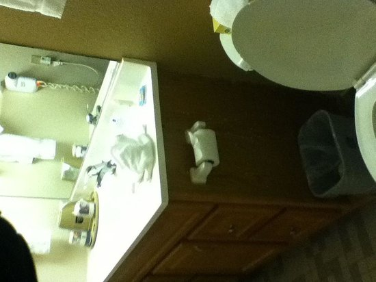 Best Western Milwaukee West: Bathroom w/ moving flooring, splatters on door, peeling finish on vanity...
