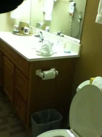 Best Western Milwaukee West: Bathroom w/ moving flooring, splatters on door, peeling finish on vanity...