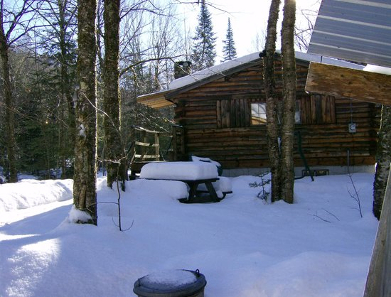 Rustic Log Cabins: cabin 7