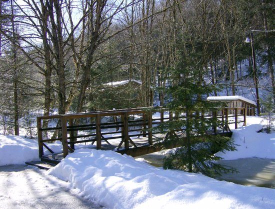 Rustic Log Cabins: bridge across brook