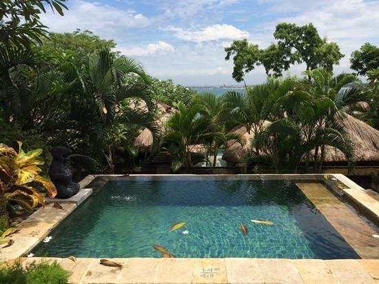 Four Seasons Resort Bali at Jimbaran Bay: the plunge pool in the room