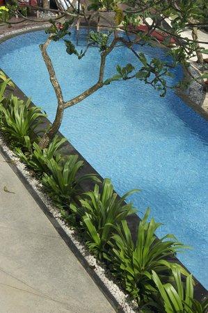 All Seasons Legian Bali : Room's View ( 2nd floor )