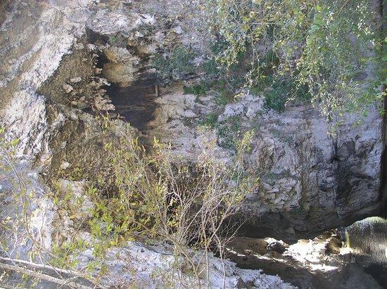 El Arcotete