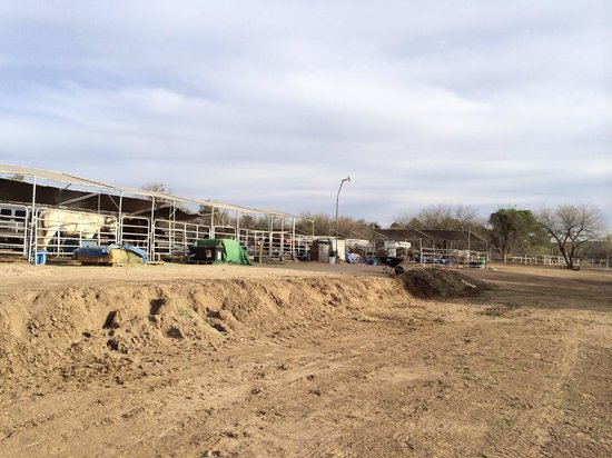 Horspitality RV Park : Horse area