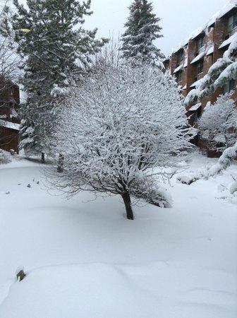 Valhalla Inn: A bit of snow has fallen