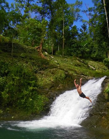 Los Campesinos Ecolodge: diving from the smaller upper falls