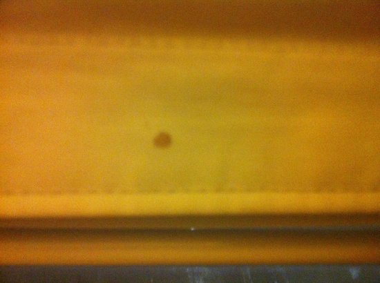 Comfort Suites Cincinnati Airport: Blood stain on curtain
