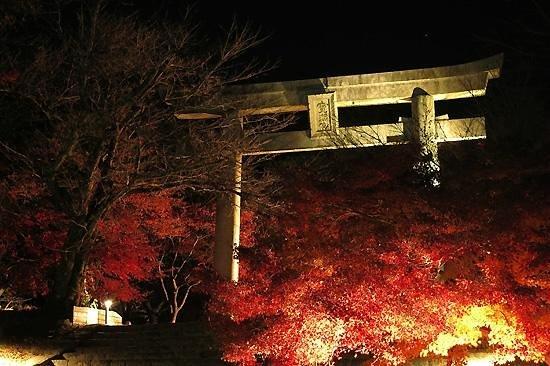 Kamado Shrine: 竈門神社 鳥居