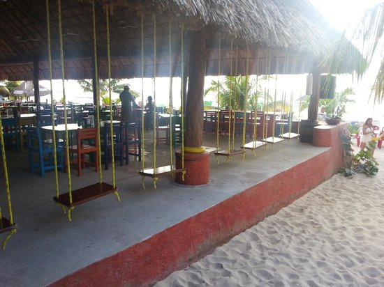 Mr Sanchos Beach Club Cozumel: swings at the bar