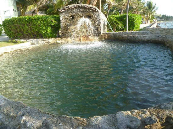The Landings at Tres Cocos: Saltwater pool