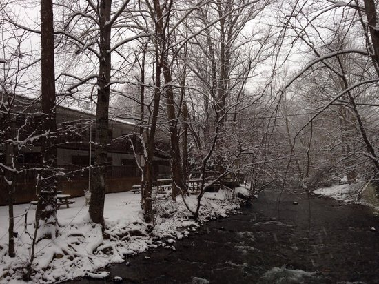 Maggie Valley Creekside Lodge : Snowy Creekside