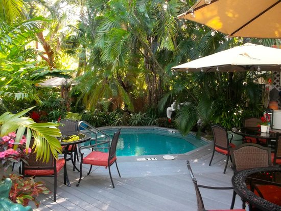 The Mermaid & The Alligator: Lovely plunge pool with jets!