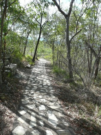 Tewantin, Australia: Easy and well kept path