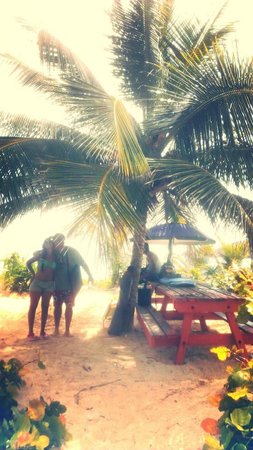 Playa Flamenco: Picnic table area