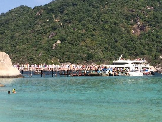 Nangyuan Island Dive Resort: Day trippers departing Nangyuan, many boarding the already packed Lomprayah catamaran
