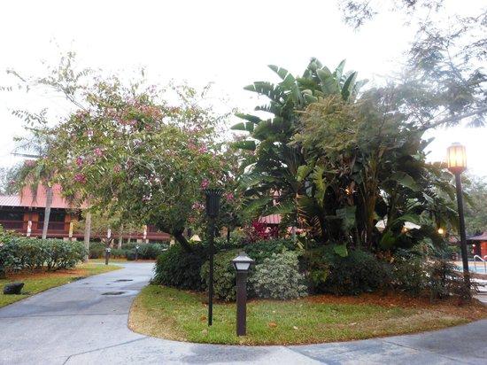 Disney's Polynesian Village Resort: Polynesian!